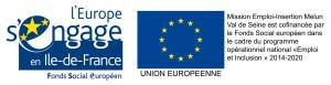 logos-FSE-2015